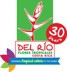 Del Rí­o Exotic Flowers